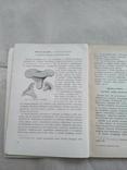 Domowe przetwory grzybowe 1959р, фото №5