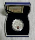 ЯНТАРНЫЙ ПУТЬ. ВРОЦЛАВ. 1 доллар - серебро, янтарь - футляр и сертификат, фото №3