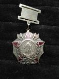 Орден Александра Невского на подвеске, копия, фото №2