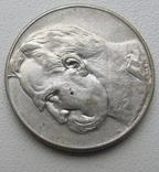 5 злотых 1934 года, фото №3