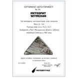 Заготовка-вставка з метеорита Seymchan, 6,6 г, із сертифікатом автентичності, фото №3