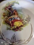Набор з 12 тарілок Коростенський фарфор, фото №8