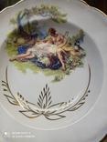 Набор з 12 тарілок Коростенський фарфор, фото №2