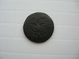 Деньга Петра 1703 год, фото №9