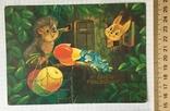 Открытка чистая: С Днём рождения! (ёжик, белочка, цветы) / худ. В. Зарубин, 1986, фото №3