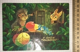 Открытка чистая: С Днём рождения! (ёжик, белочка, цветы) / худ. В. Зарубин, 1986, фото №2