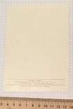 В. Зарубин, открытка чистая: С Новым годом! (белочка, конфета, подарок), 1989, фото №4