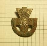 Польський спортивний знак (Państwowa Odznaka Sportowa), фото №2