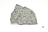 Найбільша приватна метеоритна колекція в Україні (100 експонатів), фото №13