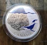 Канада 20 долларов 2013 г.: Серебро Эксклюзив, фото №2