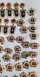 Спортивные знаки, 323 штуки., фото №13