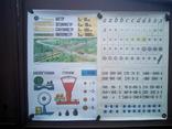 Наглядные-учебные пособия по метематике 20шт, фото №7