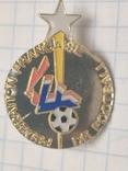 Футбол. Федерации Футбола Франции .2006 год(ЧМ в Германии), фото №2