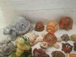 Коллекция черепашек, черепашка. 25штук одним лотом., фото №6