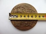 Настольная медаль. Лутунь., фото №4