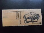 Фауна. США. Бизон.  марка MNH +поле, фото №2