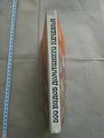 500 видов домашнего печенья, фото №3