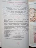 Прометей 16, фото №6
