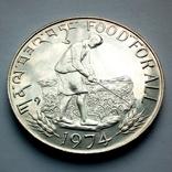Бутан 15 нгултрум 1974 г. - ФАО - Еда для всех, фото №2