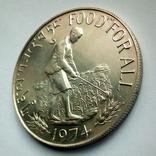 Бутан 15 нгултрум 1974 г. - ФАО - Еда для всех, фото №9