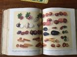 СССР Кулинария 1955 года 960 страниц Госторгиздат, фото №8