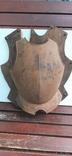 Нагрудная защита на щиту, фото №2