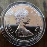 Канада 1 доллар 1974 г. Серебро. 100-летие города Виннипег., фото №3