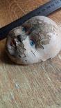 Лицо от ватной фигуры снегурочки, опилки, фото №4