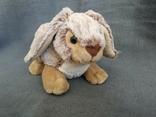 Кролик Индонезия, фото №2