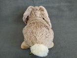 Кролик Индонезия, фото №7