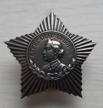 Орден А.Суворова 3 степени, фото №2