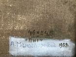 А.Манастырский, Пни, холст, масло, размер 46х54,5 см, 1958 год., фото №3
