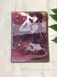 DVD Аниме Holic 1 сезон 2 диска, фото №3