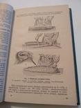 Технология приготовления пищи 1978г., фото №8