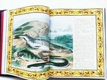 Русская рыбалка. В. П. Бутромеев. Подарочный альбом. Кожаный переплёт, фото №6