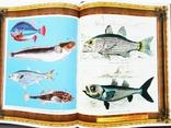 Русская рыбалка. В. П. Бутромеев. Подарочный альбом. Кожаный переплёт, фото №7