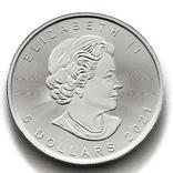 5 долларов. 2021. Кленовый лист. Канада (серебро 9999, вес 31,1 г), фото №3