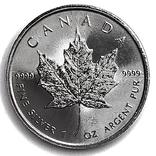 5 долларов. 2021. Кленовый лист. Канада (серебро 9999, вес 31,1 г), фото №11