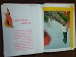 Альбом самодельный с видами Лейпцига 70-е годы, фото №4