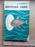 Морская рыба (Б.Никитин, 1970), фото №2