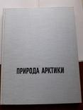 Природа Арктики. В.Пухальский Изд-во Варшава, фото №10