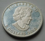 5 долларов Канада 2013, фото №6