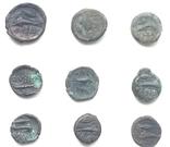Коллекция монет Ольвии., фото №4