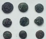 Коллекция монет Ольвии., фото №6