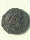 Коллекция монет Ольвии., фото №8