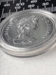 1 доллар, Канада, 1976 год, 100 лет парламентской библиотеке, серебро, фото №5