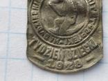 Знак Комітет опіки 1928 рік, фото №4