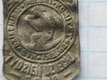 Знак Комітет опіки 1928 рік, фото №6