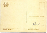Открытка СССР сказка Конёк-горбунок 1957 г. Худ. А.Афанасьев, фото №3