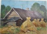 Снопы., фото №2
